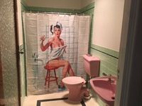 50s Bathroom Revival